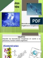 BIOMOLECULAS ORGANICAS E INORGANICAS 1° medio