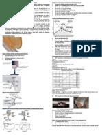 2014.03.22_SF-10.Int.Roda-Trilho - Mecânica de Contato