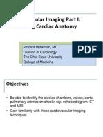 Cardiac Imaging Module 1A-2