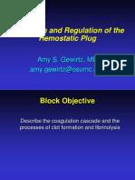 4 14 14 Formation and Regulation of the Hemostatic Plug Gewirtz
