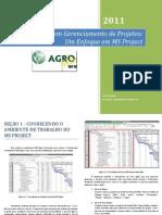 Manual Project (Empresa Jr Agronomia)