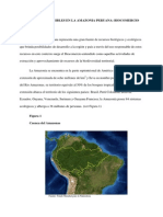 Negocios Sostenibles en La Amazonia Peruana Biocomercio