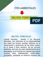 DELITTOS FORESTALES.pptx