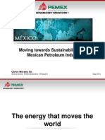 Moving Towards Sustentability in the Mexican Petroleum Industry
