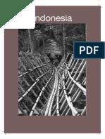 2003 Indonesia Data