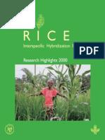 Rice_IHP