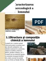 lemnul
