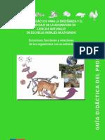 EstructurafuncionesyrelacionesGuiadocente