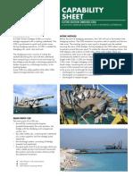 Capability Sheet 2013
