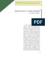 José Alberto SARDINHA [2007], A Música Rural e 'outras músicas'
