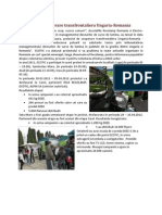 Document proiect