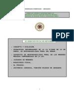 Trabajo Curso Exp. Universitario . Penal Menor.uned