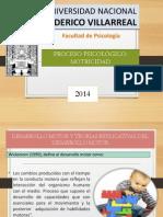 DIAPOS MOTRICIDAD..pptx