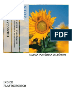 Informe de Vegetal II (Indice Plastocronico)