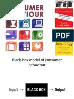 Consumer Behaviour - Lecture3