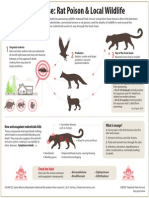 Rodenticide Infographic