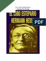 El Lobo Estepario(2)