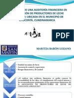 2.Sustentacion Proyecto Maritza