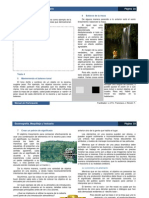 Manual Del Participante EMV 22-28