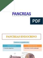 Pancreas Emdocrino