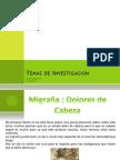 Temas de Investigacion.pptx