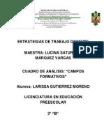 Cuadro de Analisis Campos Formativos