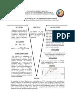 2 Informe Piro II