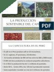 Alternativas de Produccion Sostenible de Cafe Reiles Zapata Comercio y CIA