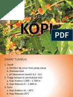 Budidaya Kopi