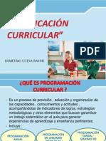 Programacion Curricular Aprendizaje Ccesa