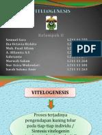 KELOMPOK 2 (VITELOGENESIS)