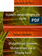 system development life cycle Presentation
