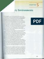 Sedimentary Enviroments