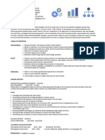 Sales Manager CV 1