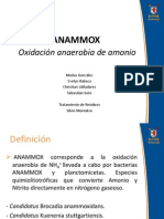 ANAMMOX (Oxidación anaerobia de amonio)