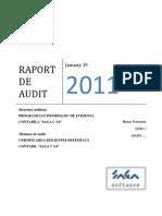 Proiect Audit SAGA -