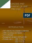 DHF-DSS.pdf