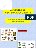 1 ZooVert-Cordados.pdf