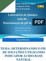 Determinação do pH de Soluções