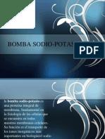 Bomba Sodio Potasio