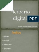 Her Bario Digital