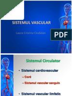 Sistemul Vascular 2013