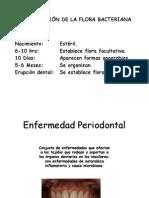 3 Etiopatogenia de La Enfermedad Periodontal 2013