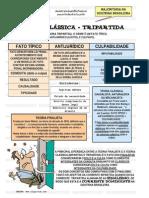 Teoria Tripartite 1 Esquematizado.doc