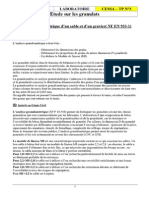 Granulats 2 - TP3 Stsbat1ANALYSE GRANULO Laboratoire Materiaux