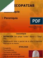 Leuconiquia - Paroniquia (Sin Subir)