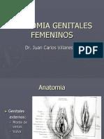 ANATOMIA GENITALES FEMENINOS.ppt