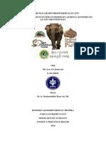 Manajemen Gajah Sumatera di beberapa Lembaga Konservasi Ex-situ di Bali