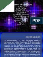 Bio Informática