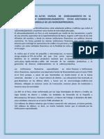AFECTA EL ENDEUDAMIENTO.docx